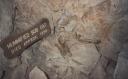 Mummified Bobcat,  Grand Canyon Caverns